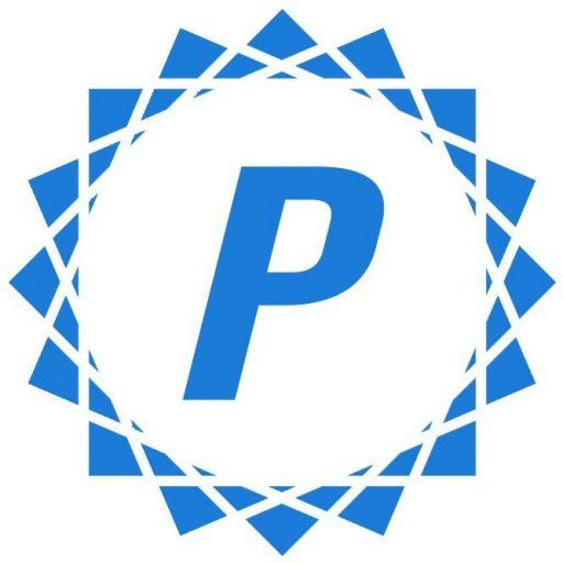 Perrin Visual Design Fractal Logo
